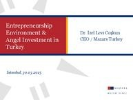 Entrepreneurship Environment Angel Instementment in Turkey